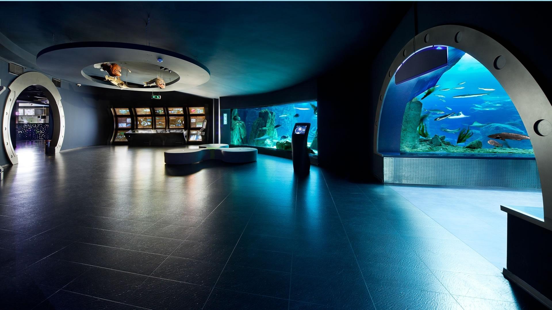 Image result for istanbul aquarium